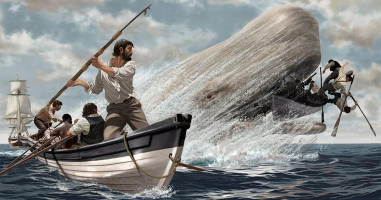 Data Hunters are the new Whale Hunters | by Qineqt Inc. | Medium